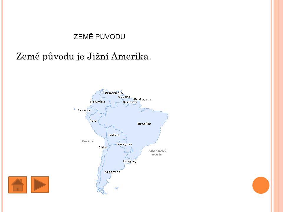 ZEMĚ PŮVODU Země původu je Jižní Amerika.