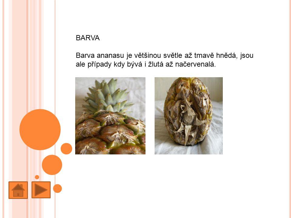 BARVA Barva ananasu je většinou světle až tmavě hnědá, jsou ale případy kdy bývá i žlutá až načervenalá.