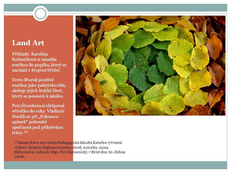 Land Art Příklady: Karolina Kohoutková si zasadila rostlinu do pupíku, který se nachází v krajině břišní.