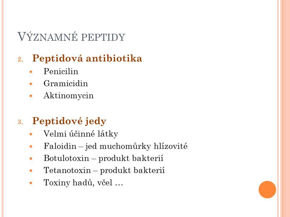 V ÝZNAMNÉ PEPTIDY 2. Peptidová antibiotika Penicilin Gramicidin Aktinomycin 3. Peptidové jedy Velmi účinné látky Faloidin – jed muchomůrky hlízovité B