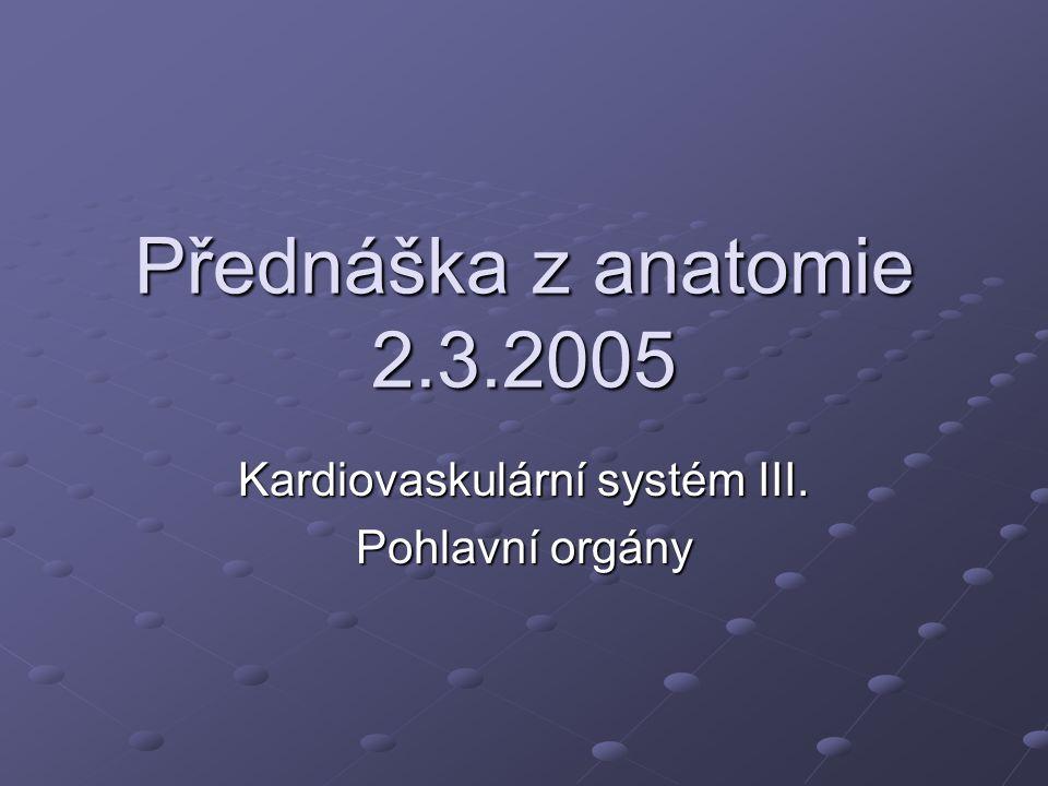 Přednáška z anatomie 2.3.2005 Kardiovaskulární systém III. Pohlavní orgány