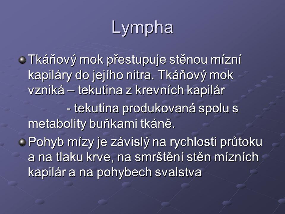 Lympha Tkáňový mok přestupuje stěnou mízní kapiláry do jejího nitra. Tkáňový mok vzniká – tekutina z krevních kapilár - tekutina produkovaná spolu s m