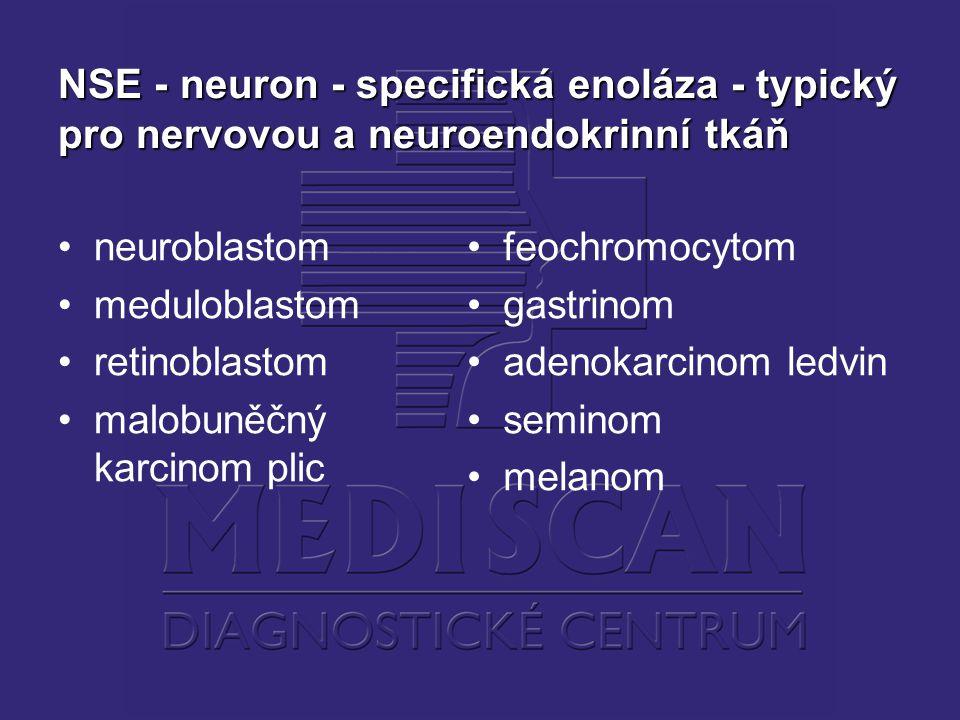 NSE - neuron - specifická enoláza - typický pro nervovou a neuroendokrinní tkáň neuroblastom meduloblastom retinoblastom malobuněčný karcinom plic feochromocytom gastrinom adenokarcinom ledvin seminom melanom