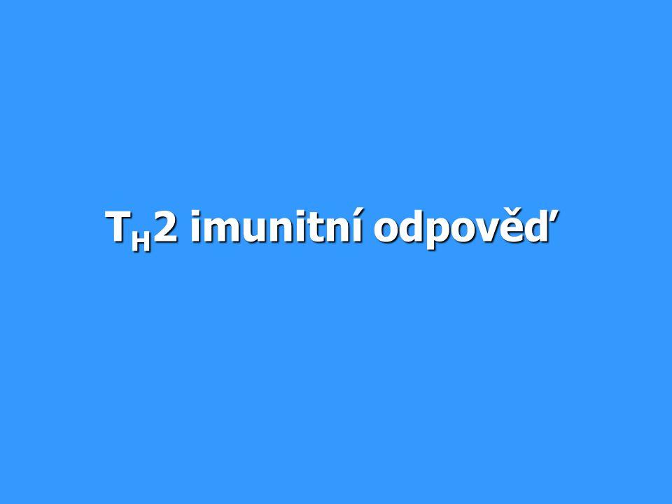 T H 2 imunitní odpověď