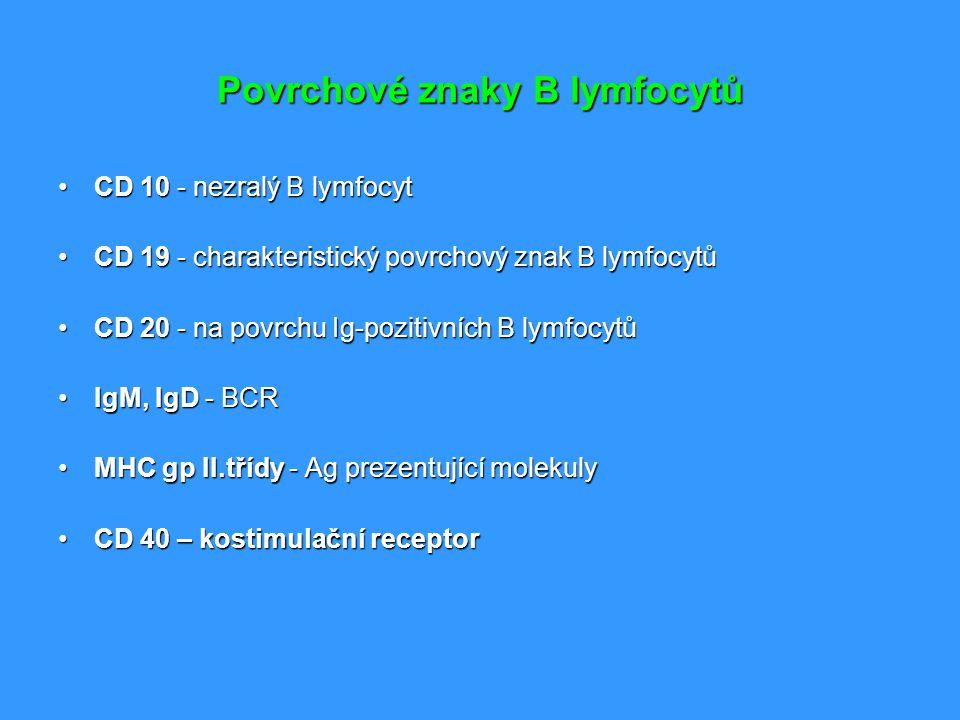 Povrchové znaky B lymfocytů CD 10 - nezralý B lymfocytCD 10 - nezralý B lymfocyt CD 19 - charakteristický povrchový znak B lymfocytůCD 19 - charakteri