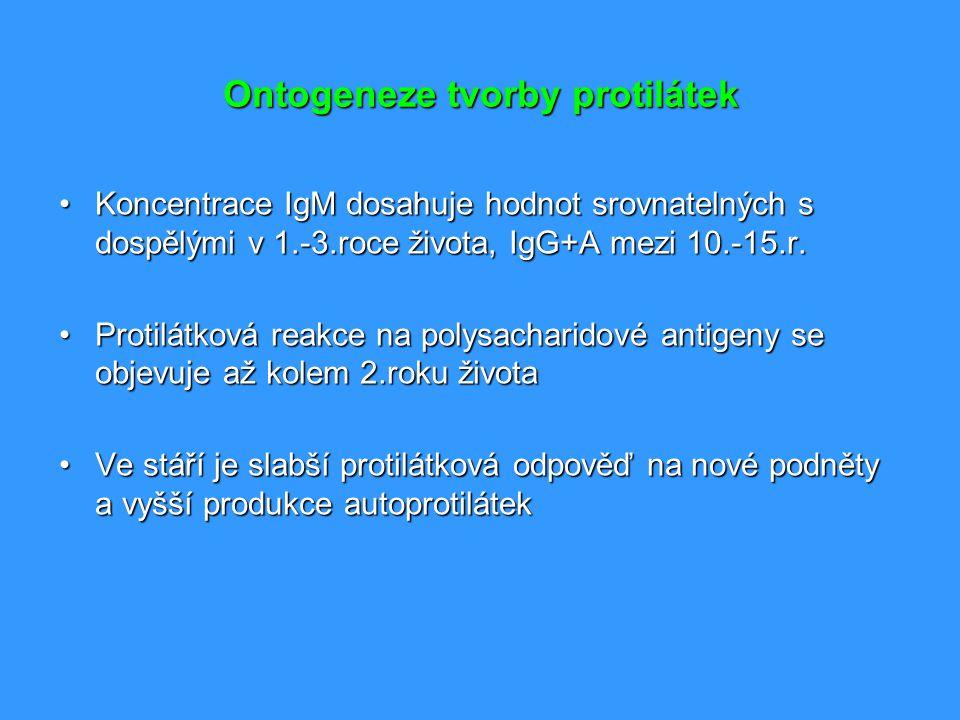 Ontogeneze tvorby protilátek Koncentrace IgM dosahuje hodnot srovnatelných s dospělými v 1.-3.roce života, IgG+A mezi 10.-15.r.Koncentrace IgM dosahuj