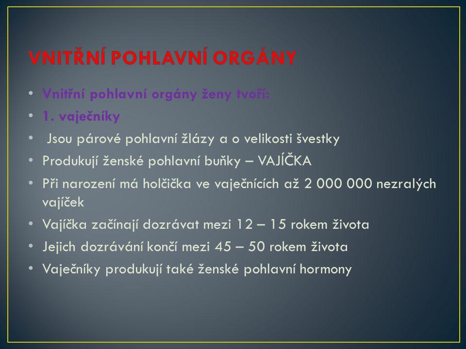 Vnitřní pohlavní orgány ženy tvoří: 1. vaječníky Jsou párové pohlavní žlázy a o velikosti švestky Produkují ženské pohlavní buňky – VAJÍČKA Při naroze