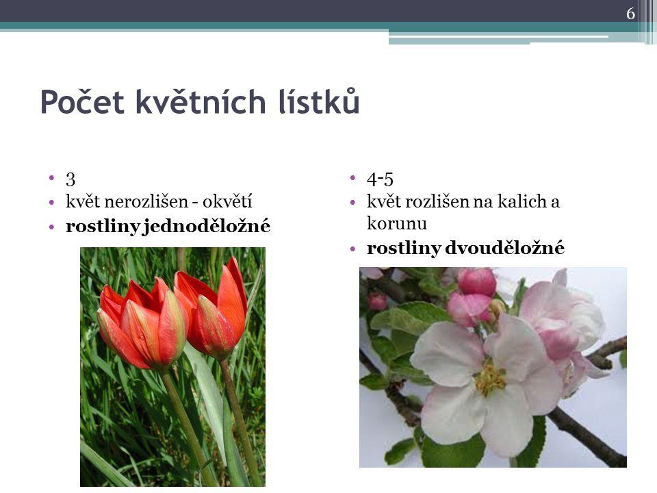 Počet květních lístků 3 květ nerozlišen - okvětí rostliny jednoděložné 4-5 květ rozlišen na kalich a korunu rostliny dvouděložné 6