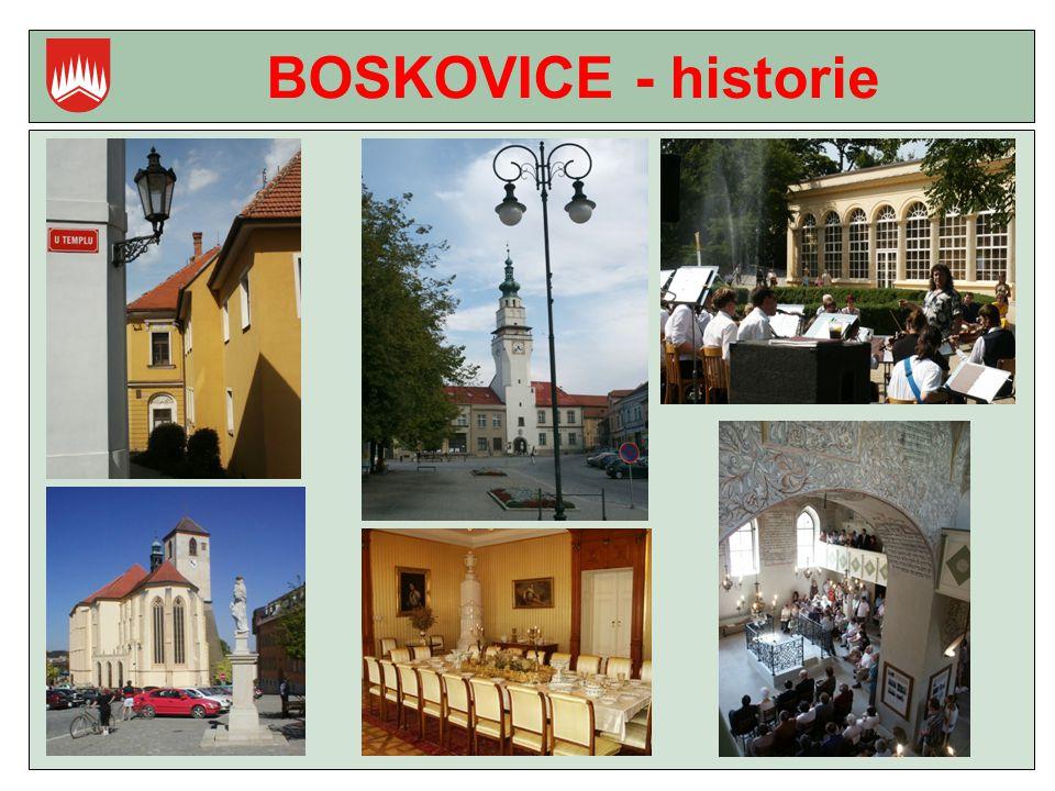 BOSKOVICE - historie
