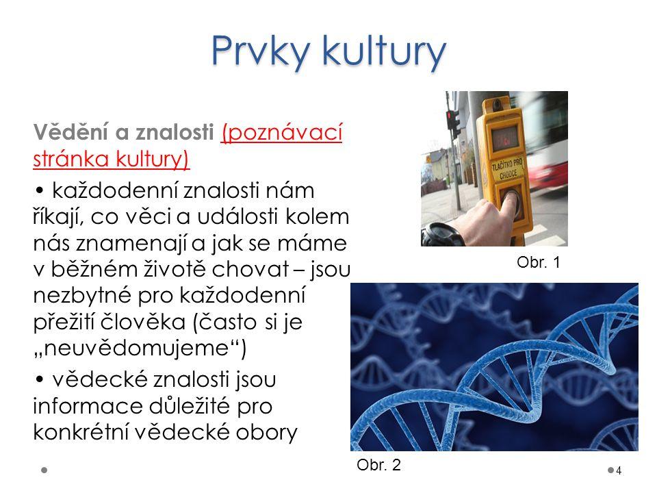 Prvky kultury 4 Vědění a znalosti (poznávací stránka kultury) každodenní znalosti nám říkají, co věci a události kolem nás znamenají a jak se máme v b