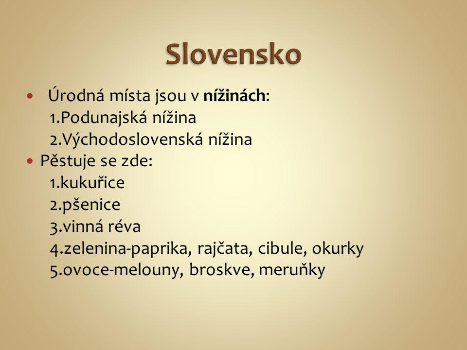 Úrodná místa jsou v nížinách: 1.Podunajská nížina 2.Východoslovenská nížina Pěstuje se zde: 1.kukuřice 2.pšenice 3.vinná réva 4.zelenina-paprika, rajčata, cibule, okurky 5.ovoce-melouny, broskve, meruňky