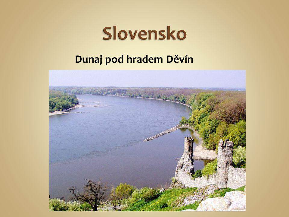 Dunaj pod hradem Děvín
