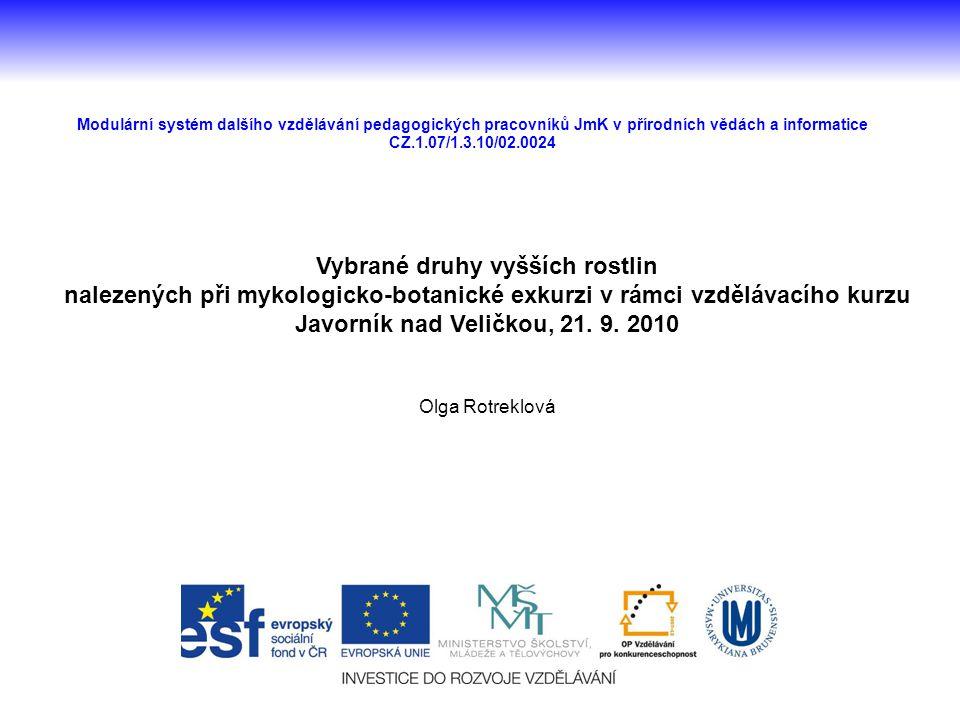 Modulární systém dalšího vzdělávání pedagogických pracovníků JmK v přírodních vědách a informatice CZ.1.07/1.3.10/02.0024 Vybrané druhy vyšších rostli