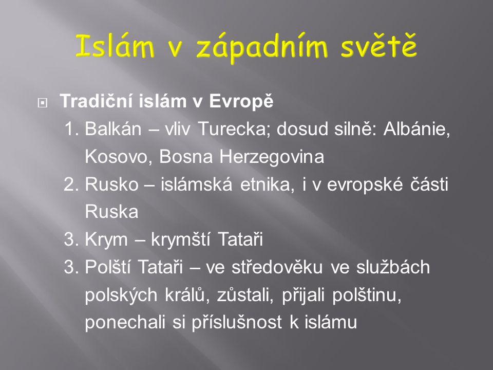  FetullFetullah Gülen (*1941), turecký islámský činitel, vychází ze súfijské tradice, pěstuje islám spřízněný s demokratickým sekulárním státem a int