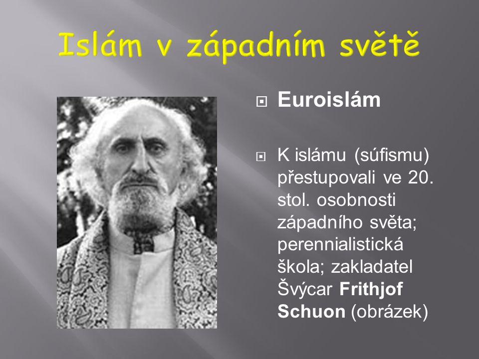  Tradiční islám v Evropě 1. Balkán – vliv Turecka; dosud silně: Albánie, Kosovo, Bosna Herzegovina 2. Rusko – islámská etnika, i v evropské části Rus