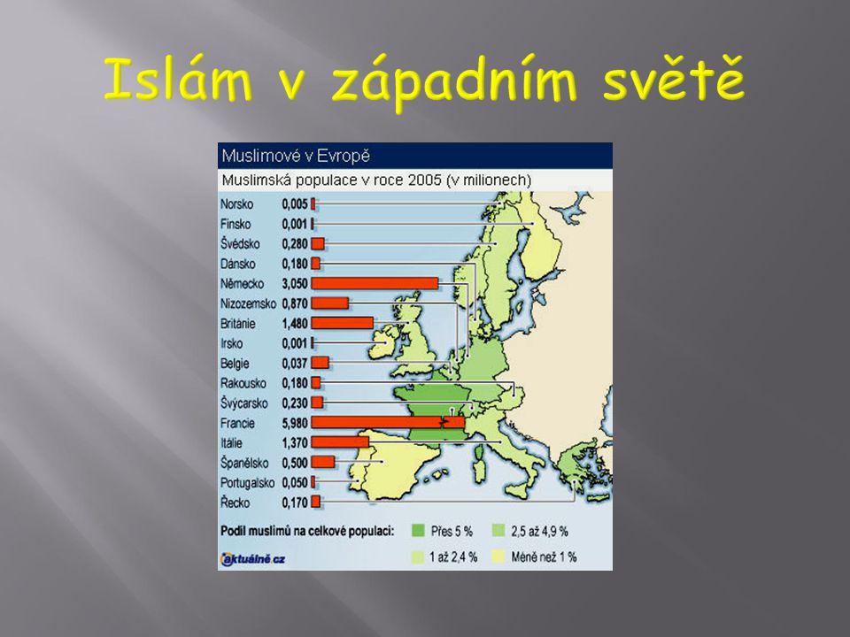  Velké skupiny muslimů se dostali do západoevropských zemí jako pozvaní přistěhovalci za prací (zejména Německo) nebo v rámci volného stěhování lidí