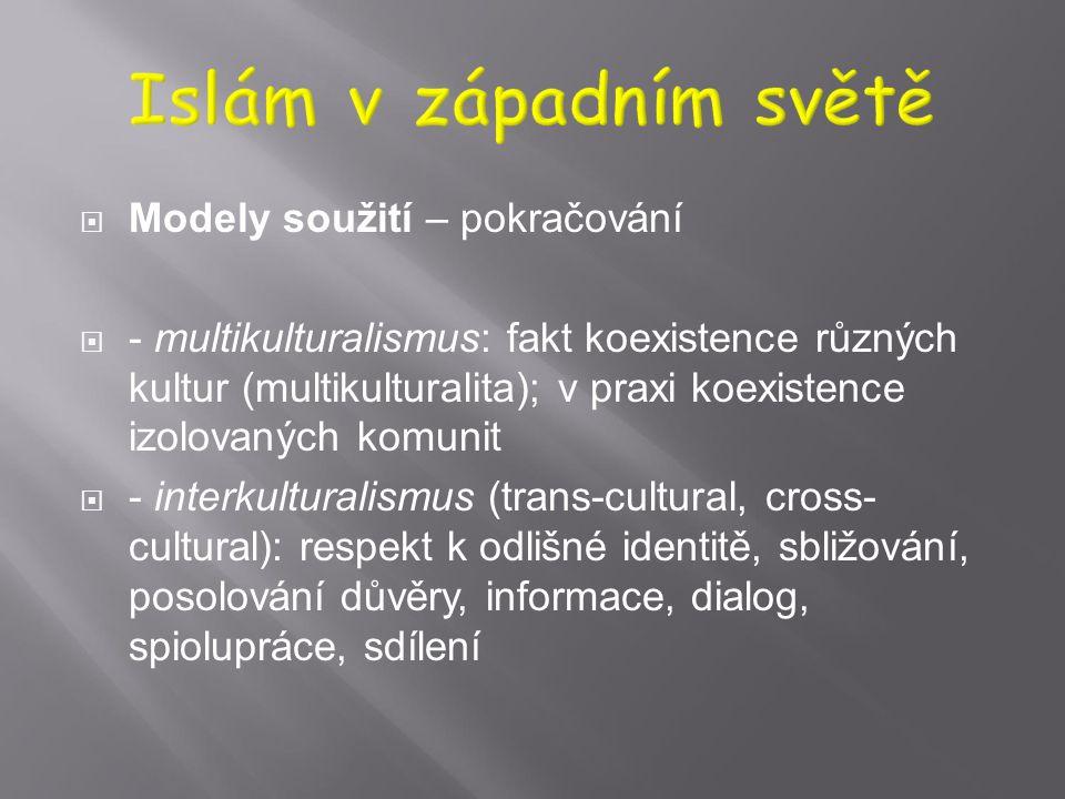  Modely soužití  - asimilace – popření vlastní identity, )plné přizpůsobení, jazykové, kulturní, náboženské (ke křesťanství, k sekularismu)  - inte