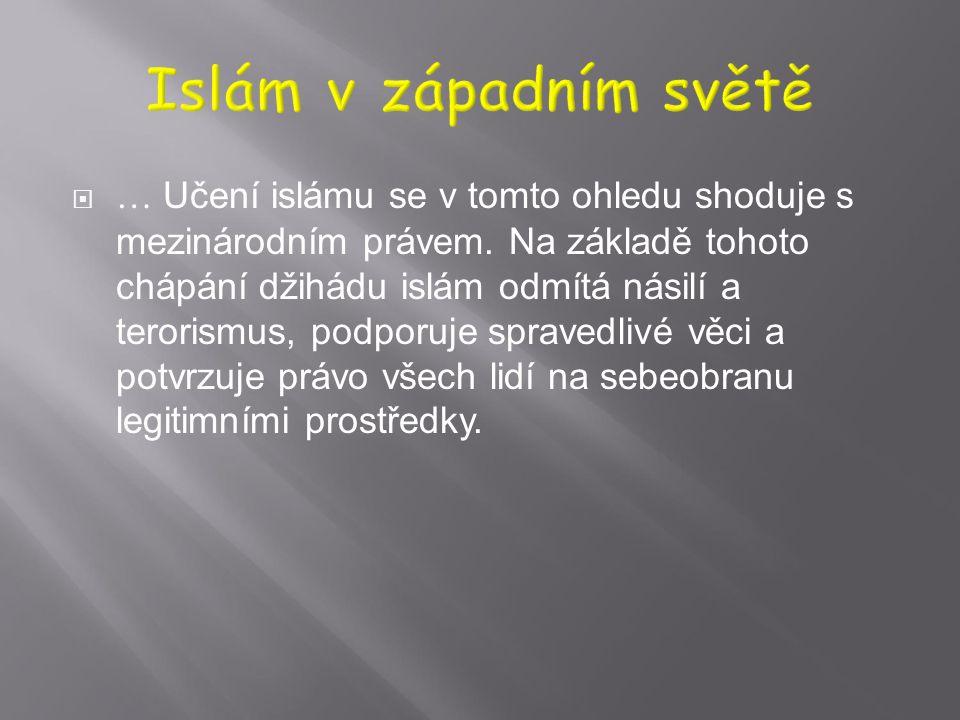  10. Islám vyzývá ke vzájemnému poznávání, dialogu a spolupráci mezi lidmi i národy jako cestě k posílení stability a záruce míru ve světě. Výraz dži
