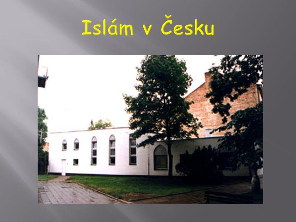  … Učení islámu se v tomto ohledu shoduje s mezinárodním právem. Na základě tohoto chápání džihádu islám odmítá násilí a terorismus, podporuje sprave