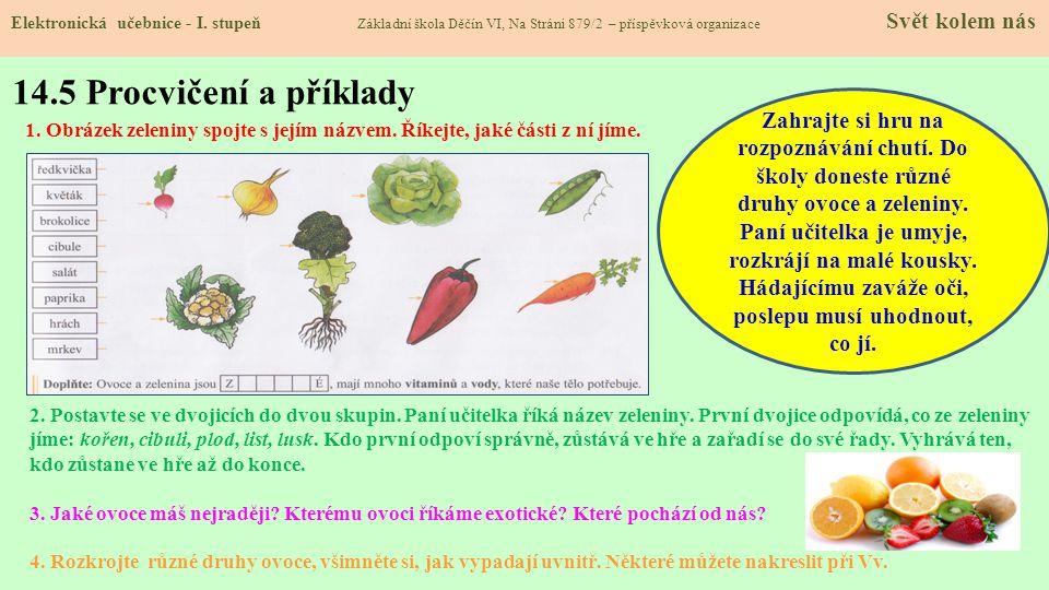 14.4 Zelenina Elektronická učebnice - I.