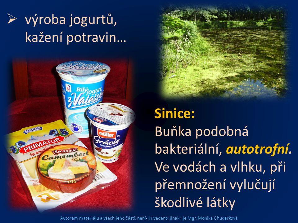 Autorem materiálu a všech jeho částí, není-li uvedeno jinak, je Mgr. Monika Chudárková  výroba jogurtů, kažení potravin… Sinice: Buňka podobná bakter