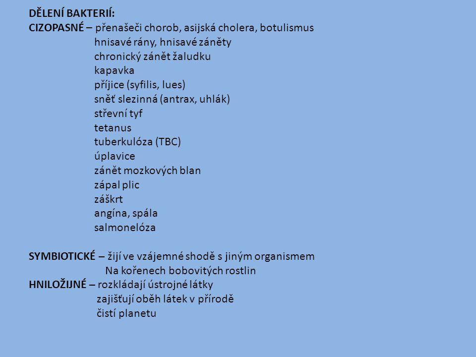 DĚLENÍ BAKTERIÍ: CIZOPASNÉ – přenašeči chorob, asijská cholera, botulismus hnisavé rány, hnisavé záněty chronický zánět žaludku kapavka příjice (syfil