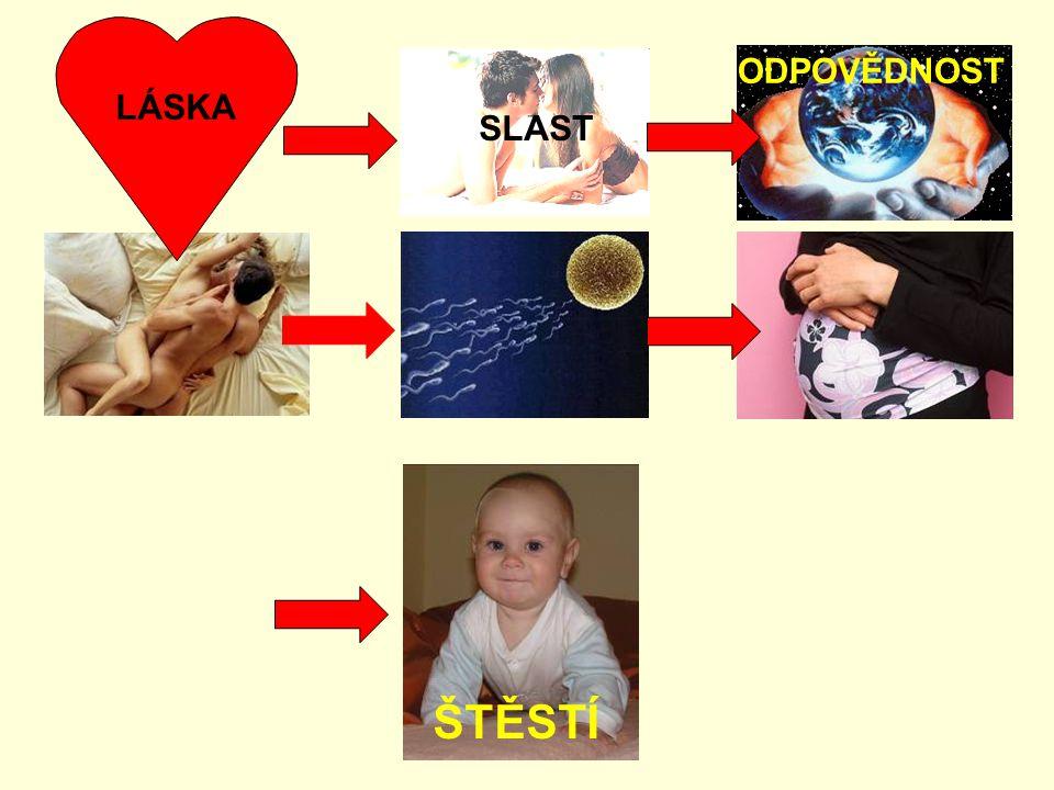 LÁSKA: období zamilovanosti plánování rodičovství