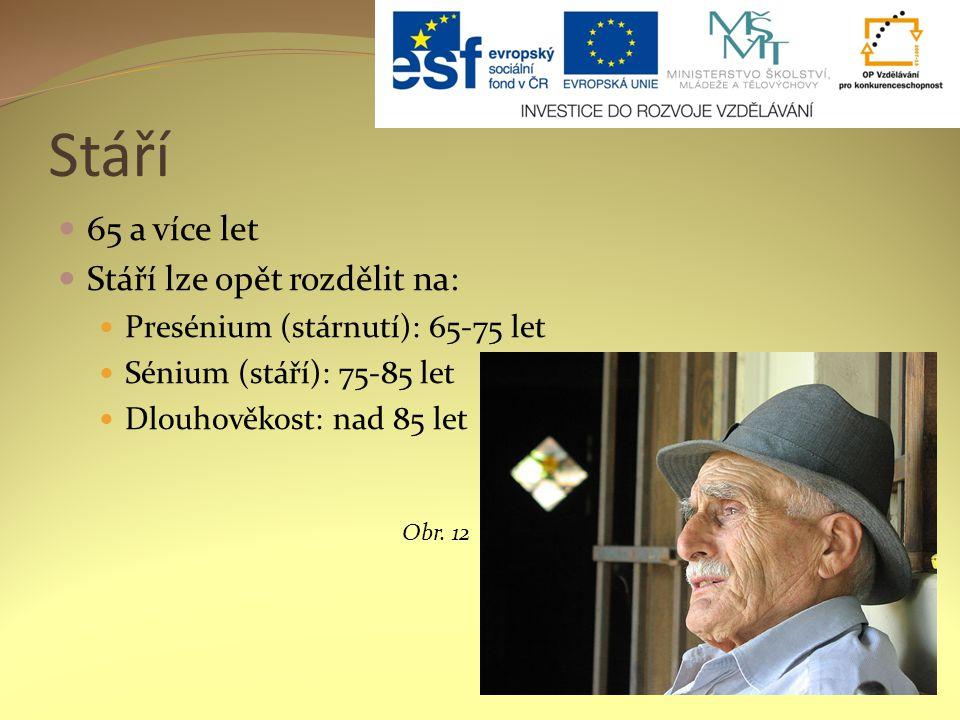 Stáří 65 a více let Stáří lze opět rozdělit na: Presénium (stárnutí): 65-75 let Sénium (stáří): 75-85 let Dlouhověkost: nad 85 let Obr.
