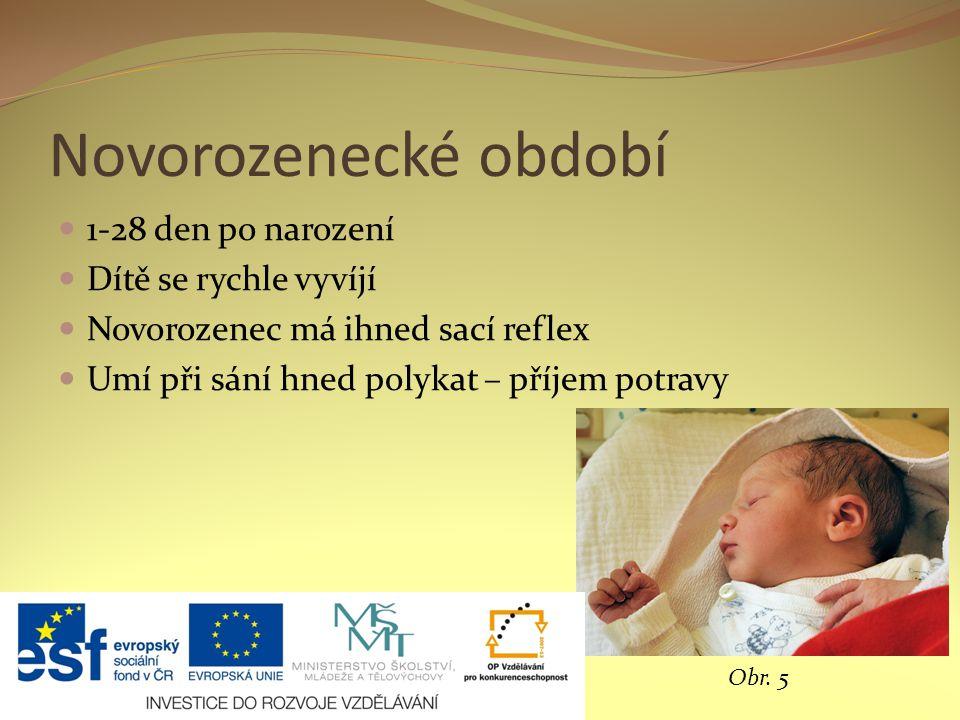 Novorozenecké období 1-28 den po narození Dítě se rychle vyvíjí Novorozenec má ihned sací reflex Umí při sání hned polykat – příjem potravy Obr.