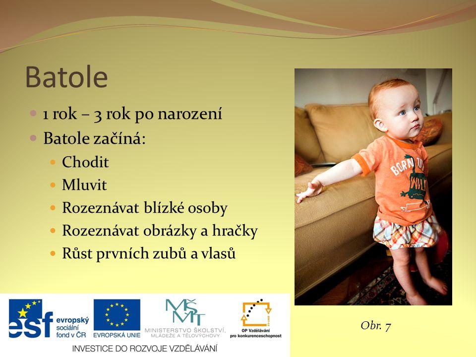 Batole 1 rok – 3 rok po narození Batole začíná: Chodit Mluvit Rozeznávat blízké osoby Rozeznávat obrázky a hračky Růst prvních zubů a vlasů Obr.