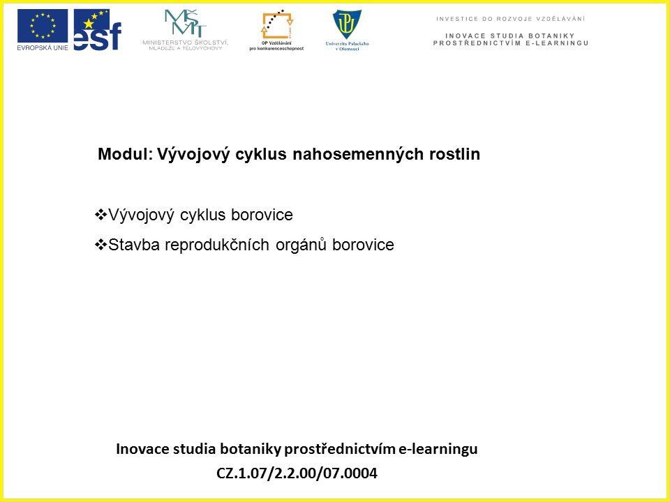 Inovace studia botaniky prostřednictvím e-learningu CZ.1.07/2.2.00/07.0004 Modul: Vývojový cyklus nahosemenných rostlin  Vývojový cyklus borovice  S