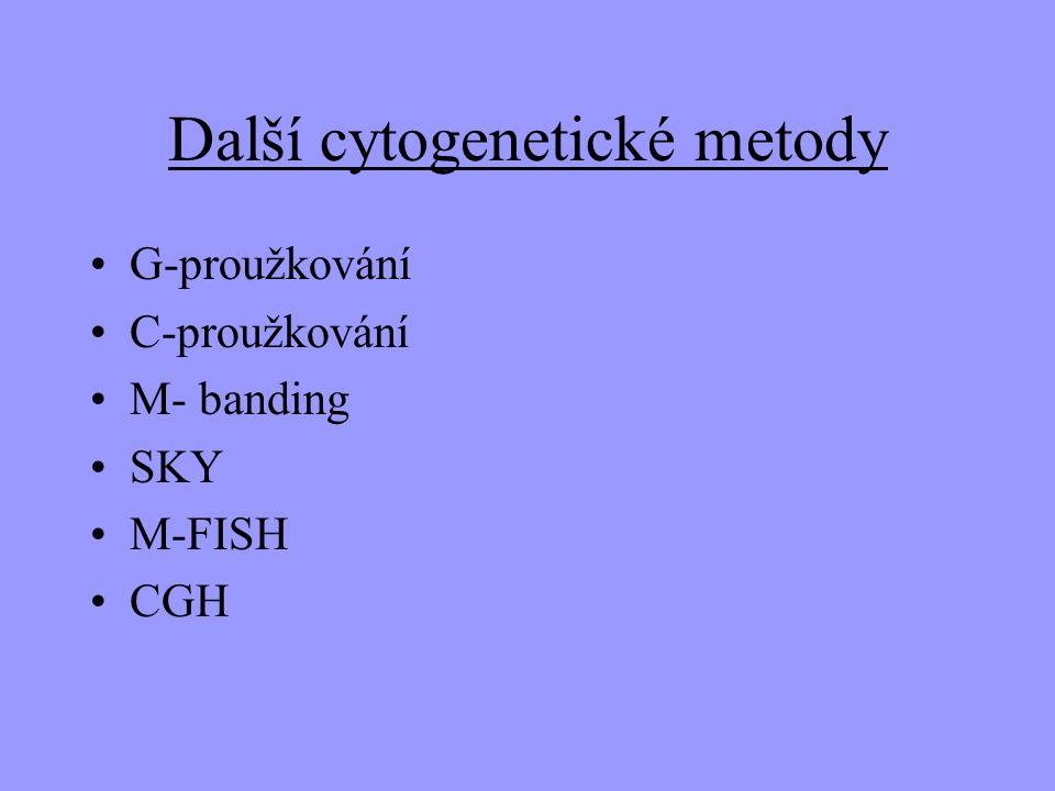Další cytogenetické metody G-proužkování C-proužkování M- banding SKY M-FISH CGH