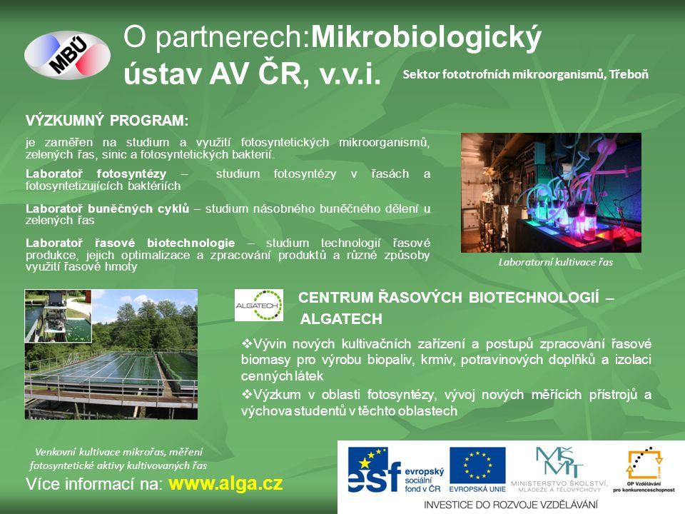 VÝZKUMNÝ PROGRAM: je zaměřen na studium a využití fotosyntetických mikroorganismů, zelených řas, sinic a fotosyntetických bakterií.