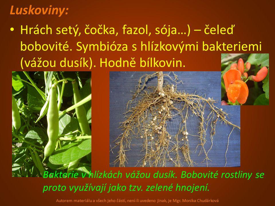 Luskoviny: Hrách setý, čočka, fazol, sója…) – čeleď bobovité.