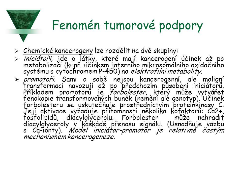 Fenomén tumorové podpory  Chemické kancerogeny lze rozdělit na dvě skupiny:  iniciátoři; jde o látky, které mají kancerogení účinek až po metaboliza