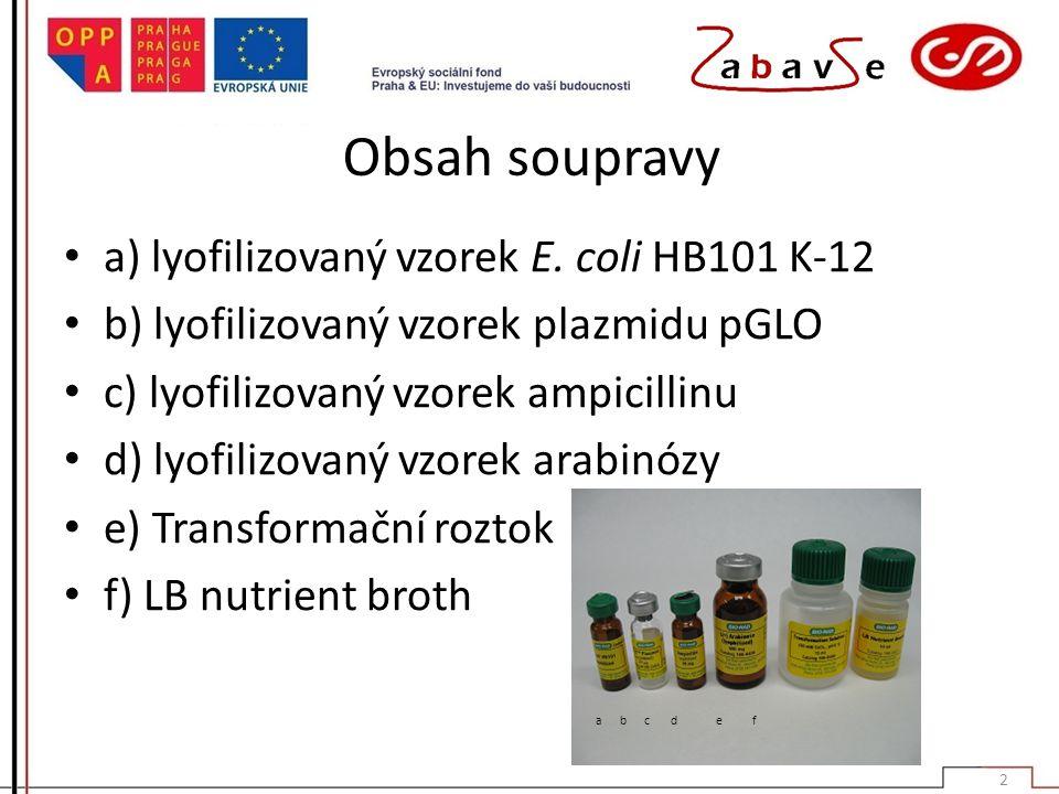 Obsah soupravy a) lyofilizovaný vzorek E. coli HB101 K-12 b) lyofilizovaný vzorek plazmidu pGLO c) lyofilizovaný vzorek ampicillinu d) lyofilizovaný v