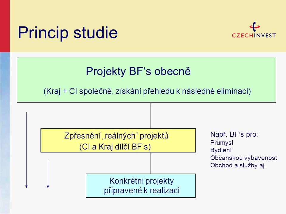 """Princip studie Projekty BF's obecně Zpřesnění """"reálných projektů Konkrétní projekty připravené k realizaci (Kraj + CI společně, získání přehledu k následné eliminaci) (CI a Kraj dílčí BF's) Např."""