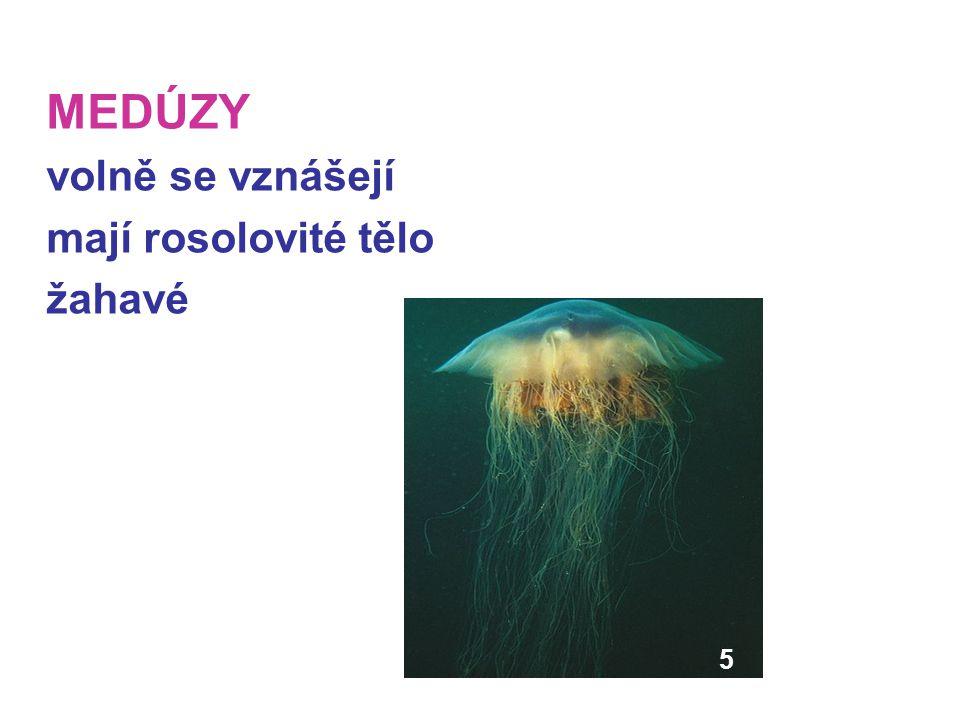 Použitá literatura: UČEBNICE ČABRADOVÁ, Věra.
