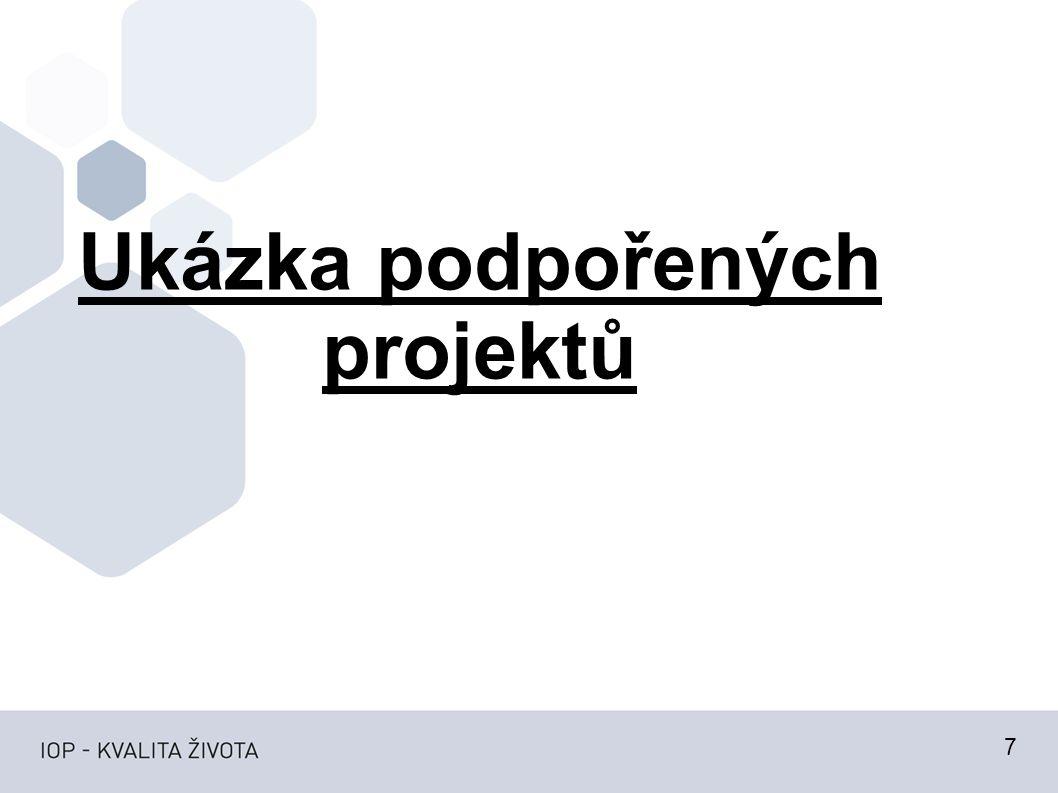 Ukázka podpořených projektů 7