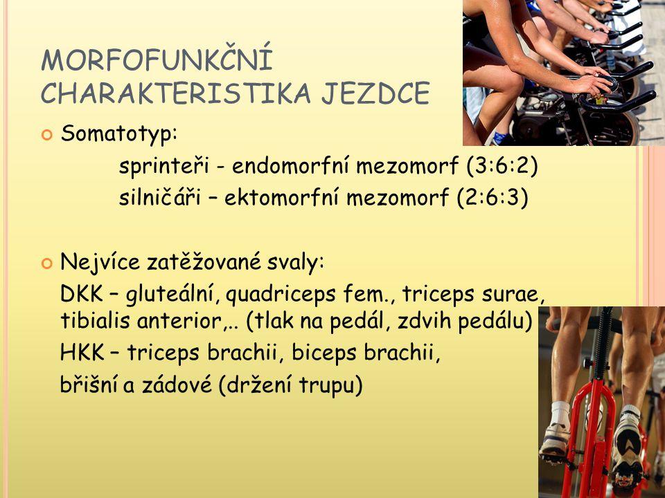 MORFOFUNKČNÍ CHARAKTERISTIKA JEZDCE Somatotyp: sprinteři - endomorfní mezomorf (3:6:2) silničáři – ektomorfní mezomorf (2:6:3) Nejvíce zatěžované svaly: DKK – gluteální, quadriceps fem., triceps surae, tibialis anterior,..