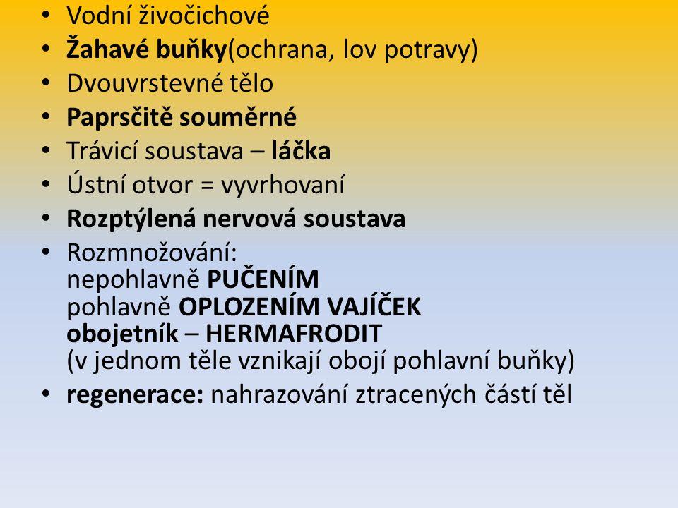 Zdroj: www.zoology.cz