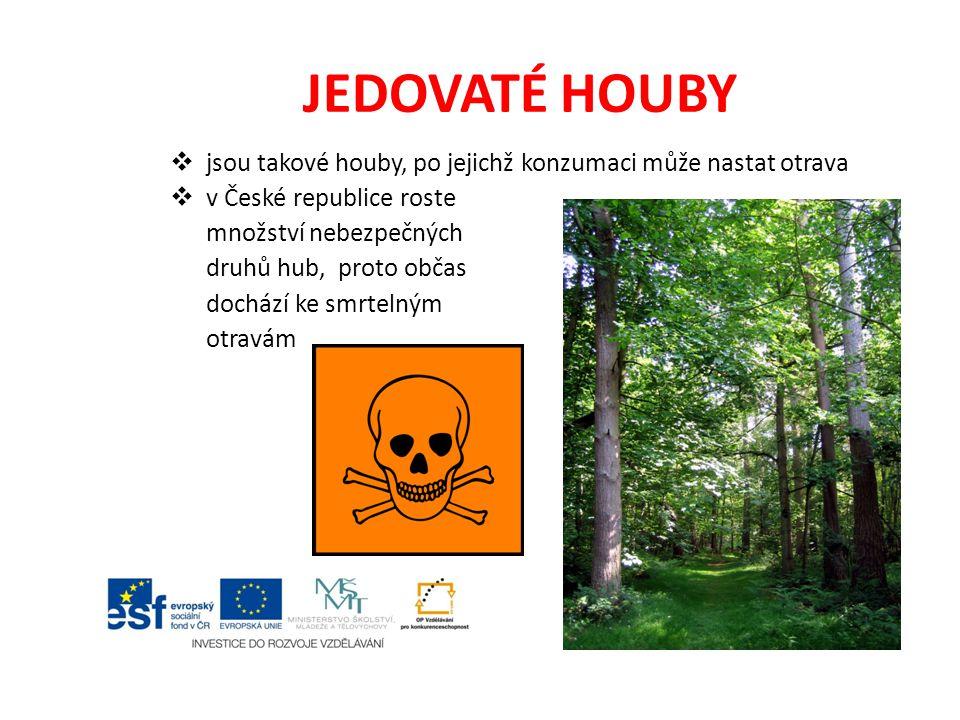 JEDOVATÉ HOUBY  jsou takové houby, po jejichž konzumaci může nastat otrava  v České republice roste množství nebezpečných druhů hub, proto občas doc
