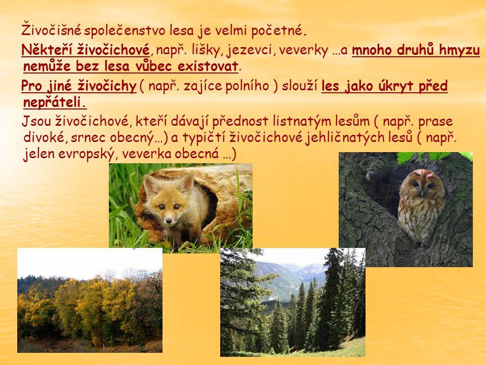Živočišné společenstvo lesa je velmi početné.Někteří živočichové, např.