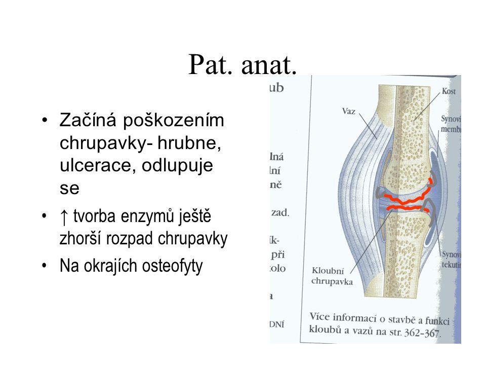 Pat. anat. Začíná poškozením chrupavky- hrubne, ulcerace, odlupuje se ↑ tvorba enzymů ještě zhorší rozpad chrupavky Na okrajích osteofyty