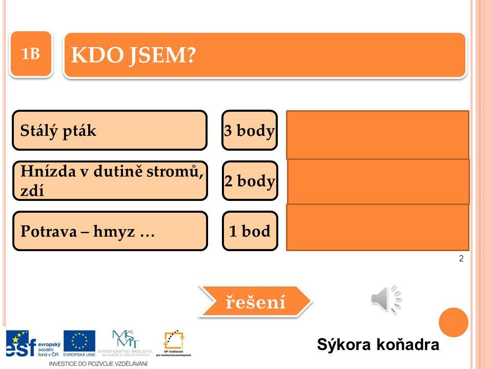 6B Stálý pták3 body V zajetí se naučí několika slovům 2 body Potrava - hmyz, drobní hlodavci … 1 bod KDO JSEM.