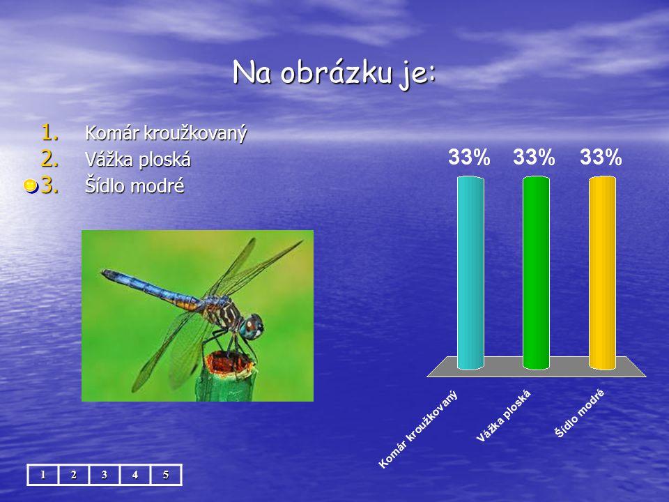 Na obrázku je: 12345 1. Komár kroužkovaný 2. Vážka ploská 3. Šídlo modré
