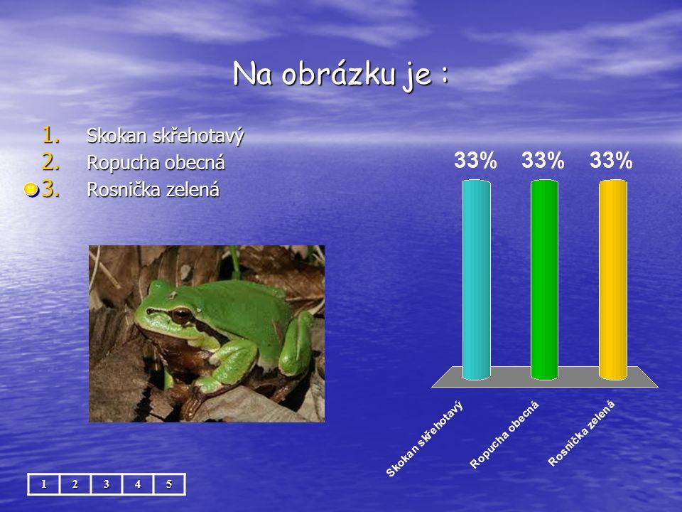 Na obrázku je : 12345 1. Skokan skřehotavý 2. Ropucha obecná 3. Rosnička zelená