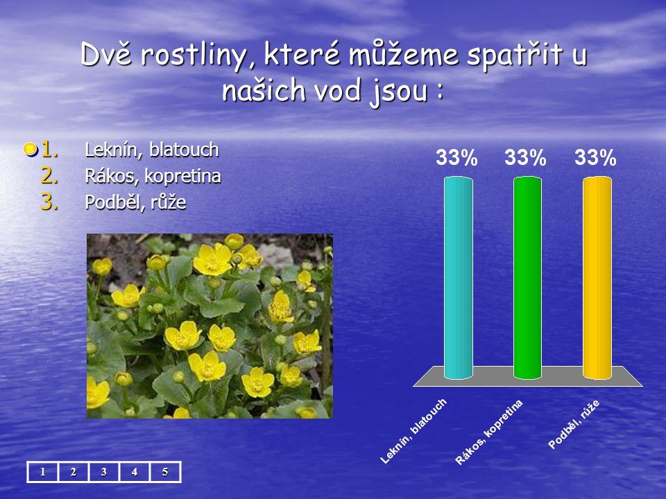 Dvě rostliny, které můžeme spatřit u našich vod jsou : 12345 1. Leknín, blatouch 2. Rákos, kopretina 3. Podběl, růže