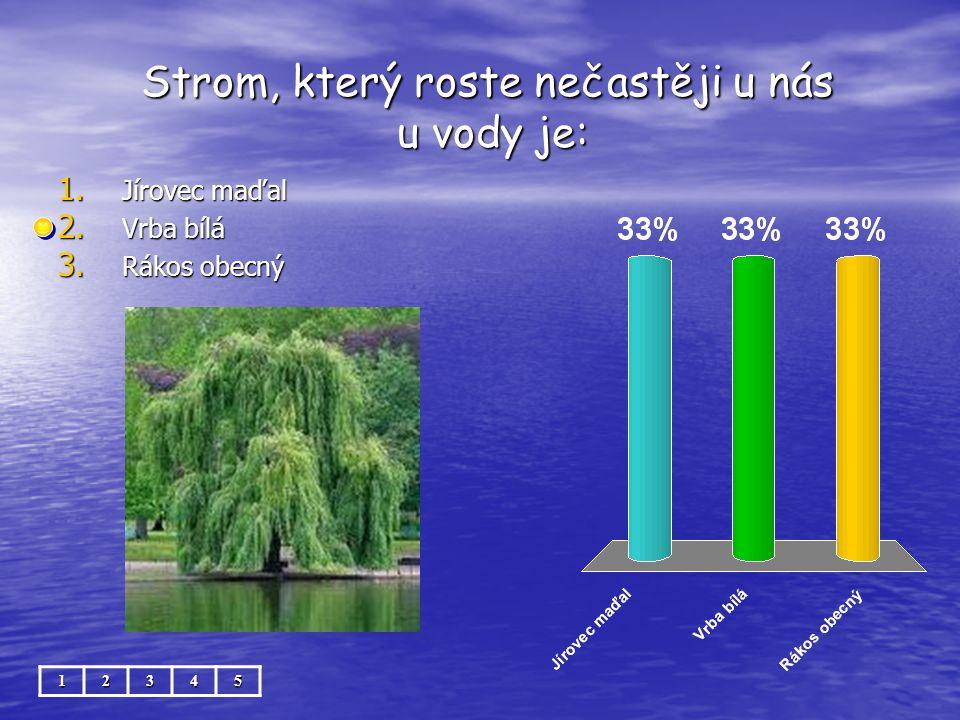 Strom, který roste nečastěji u nás u vody je: Strom, který roste nečastěji u nás u vody je:12345 1. Jírovec maďal 2. Vrba bílá 3. Rákos obecný