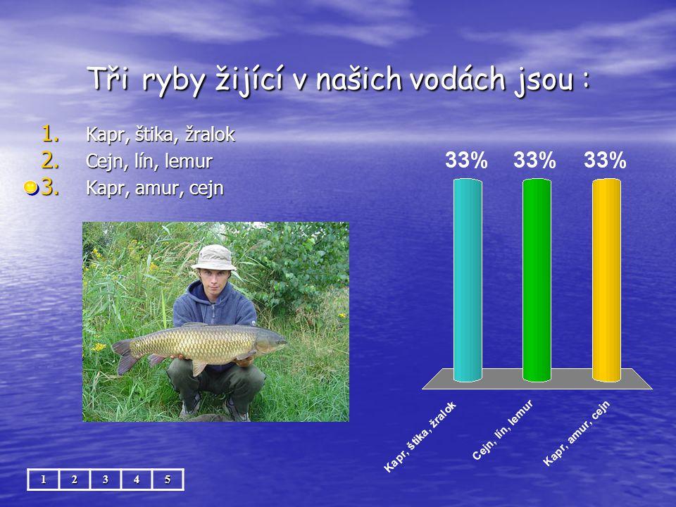 Tři ryby žijící v našich vodách jsou : 12345 1. Kapr, štika, žralok 2. Cejn, lín, lemur 3. Kapr, amur, cejn